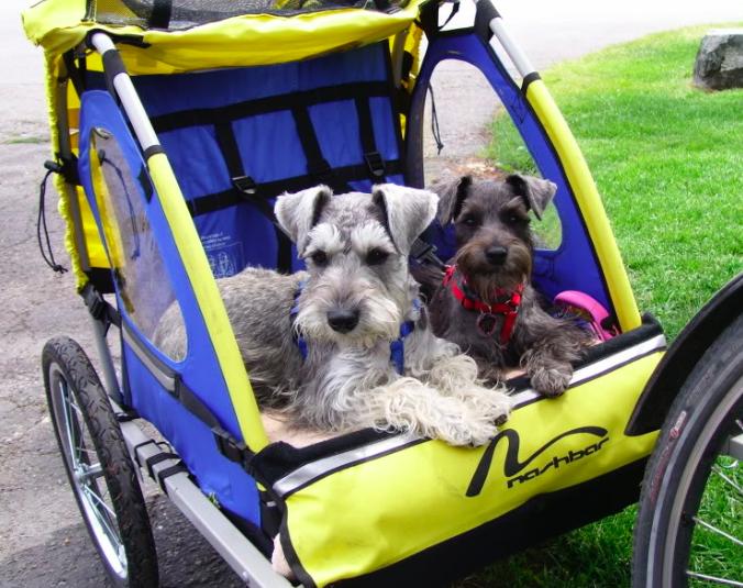 hondenkar achter fiets - hondenfietskar -