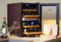 wijnklimaatkast - wine klima d12